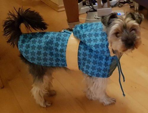 Regenmäntelchen für Nelly